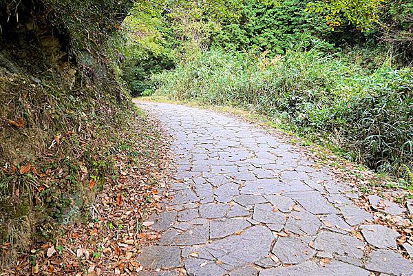 二上山遊歩道、登り始めの石畳