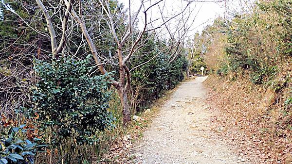 20190102_1_二上山_展望台手前