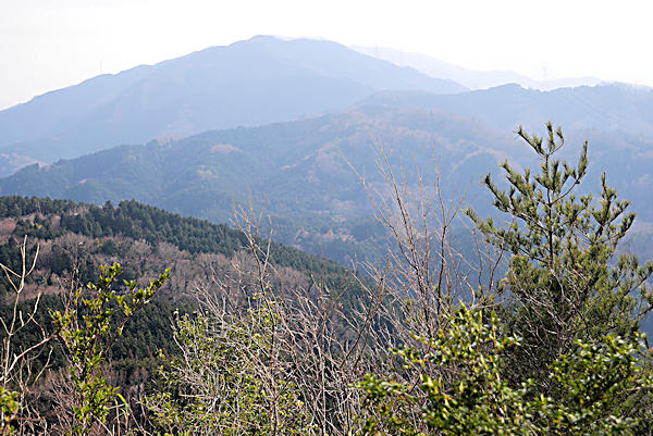 20190224二上山 (8)岩屋峠から雌岳への登りから大和葛城山