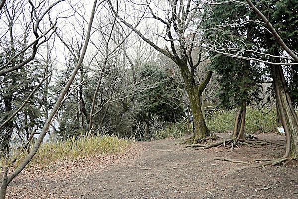 20190209二上山 (2)雄岳頂上