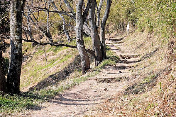 20190226二上山 (5)岩屋峠からの登山道