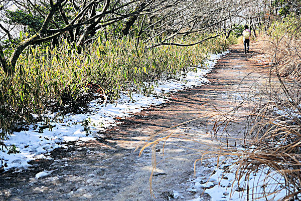 20190202二上山_雄山 (5)雪が残る遊歩道