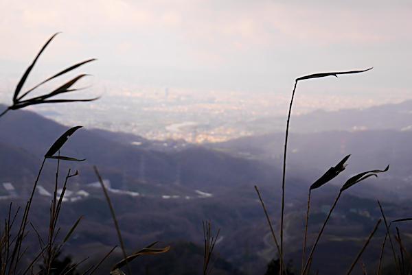 20190316二上山 (2)雌岳山頂手前からの眺め