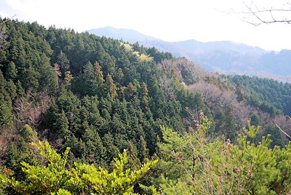 20190309二上山 (3)岩屋峠の近くからの眺め