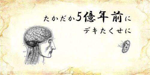 「たかだか5億年前にデキたくせに」という文字と、「脳と微生物」のイラスト1