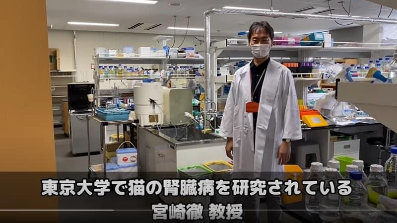 東京大学で猫の腎臓病を研究されている宮崎徹教授