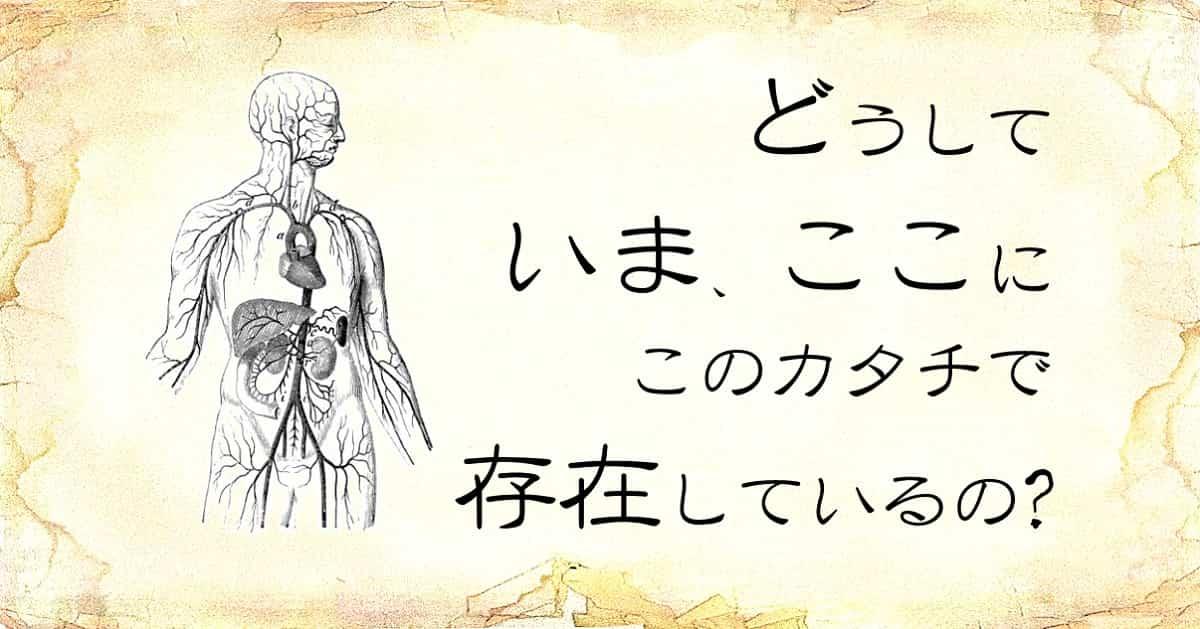 「どうして、いま、ここに、そのカタチで、存在しているの」という文字と、「人体」のイラスト