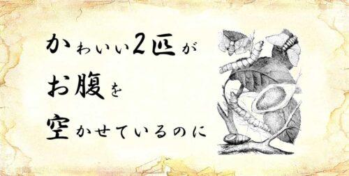「かわいい2匹がお腹を空かせているのに」という文字と、「カイコ」のイラスト.jpg
