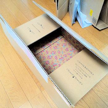No.0049 段ボール箱